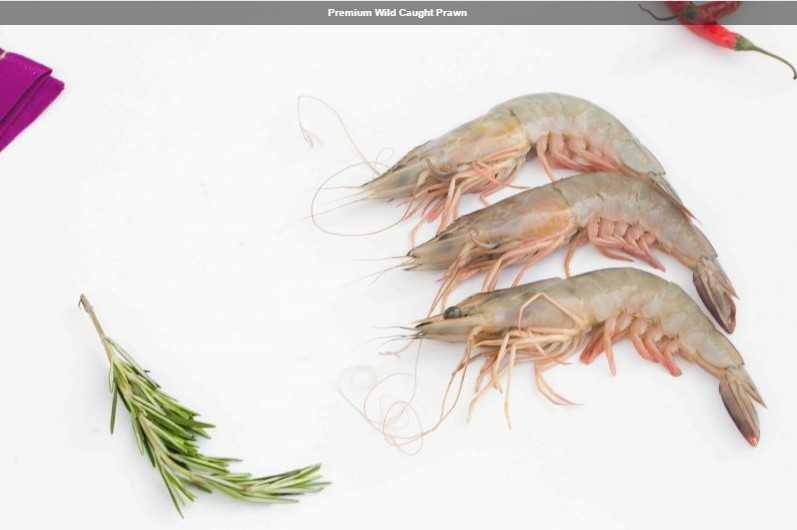 Premium Wild Caught Prawn (100 Count)