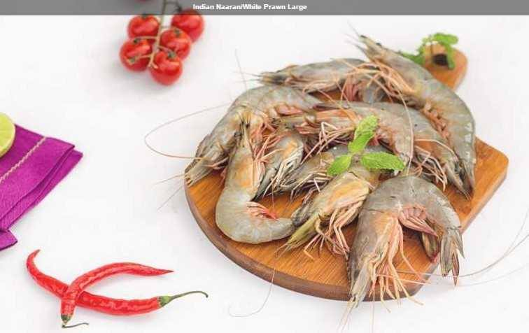 White Prawns : Indian Naaran